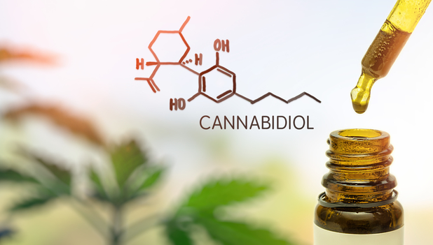 How to Start Private Labeling CBD Products
