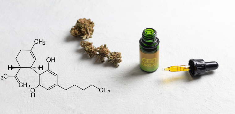 Most Popular CBD Products on the Market